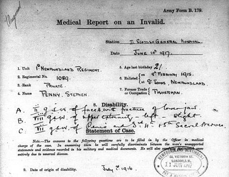 SOLDIER MEDICAL REPORT